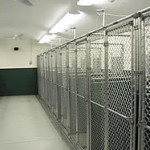 Stone Creek Kennels